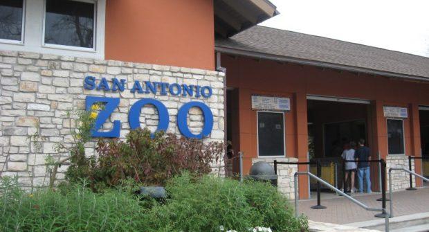 San Antonio Zoo in Texas honors first responders…..